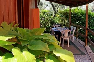 bungalow-gardasee-4-personen-veranda-2