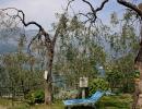 camping-gardasee-monja-10