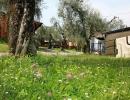 camping-gardasee-monja-11