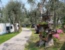 camping-gardasee-monja-16