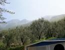 camping-gardasee-monja-28