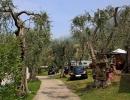 camping-gardasee-monja-7